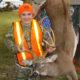 Deer Contest 2020